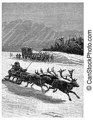 These sleigh drawn by three reindeer, vintage engraving. - ...