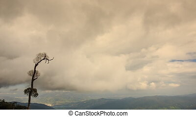 Thick Clouds above Hills Single Tree on Foreground
