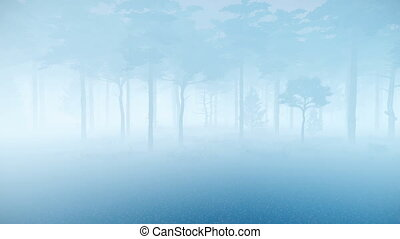 Motion through thick fog in a spooky pine forest at dusk or misty night. Natural background for horror and Halloween. Realistic 3D animation rendered in 4K, ultra high definition.
