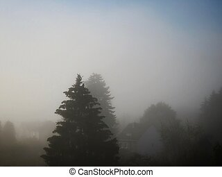 Thick morning fog in autumn