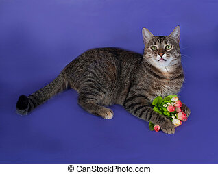 Thick striped cat lying with bouquet of flowers in his paws on b