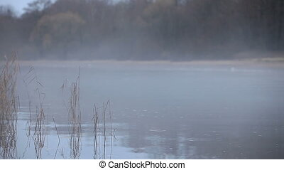 thick white fog over the river