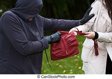Thief in the park - Aggressive thief in the park snatching a...