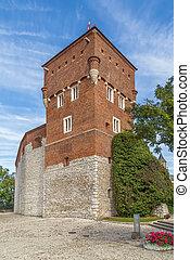 Thieves' Tower, Krakow, Poland