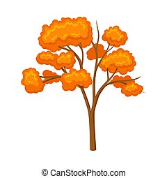 Thin tree with an orange crown. Vector illustration on a white background.