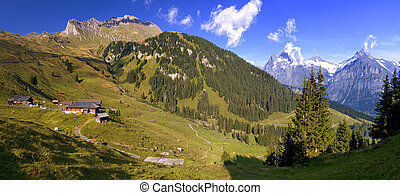 This is a hiking trail near Grindelwald in the Canton of Bern in Switzerland. Panoramic view of snowy mountains in the Swiss Alps.