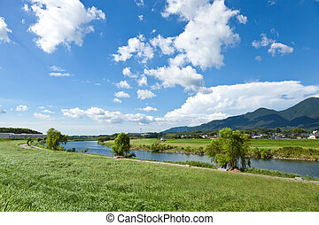 riverside landscape of summer