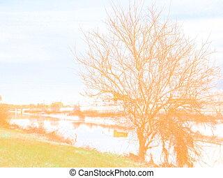 riverside landscape of winter