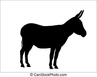 donkey - this is a silhouette from a donkey, vector