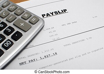 payslip - This is an image of payslip.