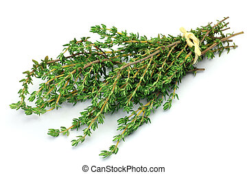 thyme - This is fresh herb. I bundled up thyme and took it ...