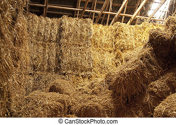This is hay bundles stack inside of a farm.