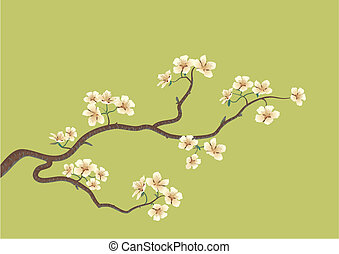 japanese cherry tree - This is the vector illustration of a...