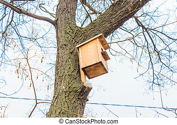 This there is bird houses which I have found walking in park.