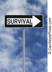This Way To Survival
