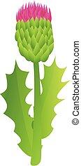 Thistle bio plant icon, cartoon style