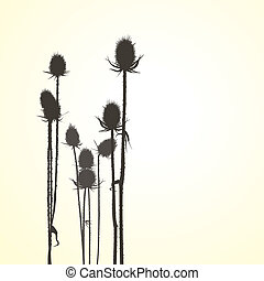 Thistle, isolated vector objects - Illustrations brown...
