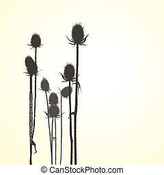 Illustrations brown bramble, vector