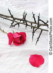 Thorns against white fabric and red rose petals, Christian background.