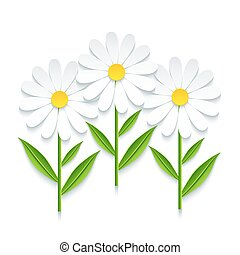 Three 3d chamomile isolated on white background
