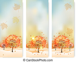Three abstract autumn banners with color leaves. Vector