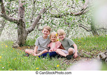 Three Adorable Sibling Children Smiling Happily Outside in the Flowering Apple Trees