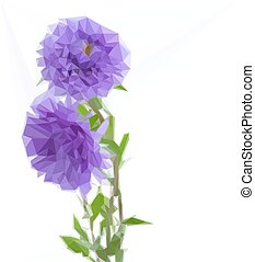 three aster lilac flowers - Low poly illustration three...