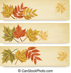 Three autumn banners with color leaves
