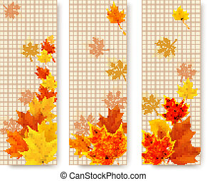 Three autumn banners with color leaves. Vector