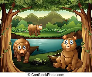 Three bears living by the river