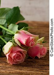 Vertical Photo of three beautiful tender roses placed on old worn wooden board with significant grooves and texture.