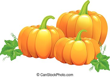 Three beautiful ripe pumpkins