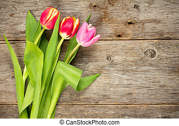 Three beautiful tulips on wooden background