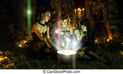 Three beautiful witches are looking in to the magic cauldron. Dark forest on the background.