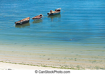 Three floating boats on the water nearby shore.