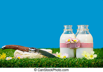 three bottles with a cheese milk in the grass
