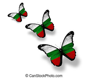 Three Bulgarian flag butterflies, isolated on white