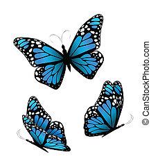 Three butterflies in blue tones. Vector