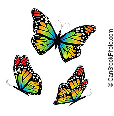 Three butterflies in colorful tones. Vector