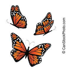 Three butterflies in orange tones. Vector