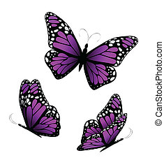 Three butterflies in purple tones. Vector illustration