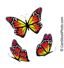 Three butterflies in yellow  and red tones. Vector