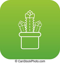 Three cactus icon green vector
