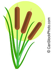 cattails - Three cattails with leaves