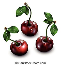 Three cherries isolated on white background.