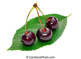 Three cherry on a leaf isolated
