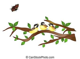 Three Chickadees in a Tree - Illustration of three chickadee...