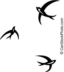 Three circling swallows