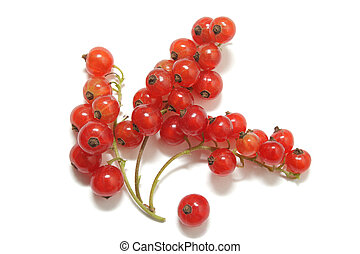 Three clusters of red currant and a single berry isolated on white background