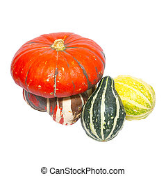 Three colored pumpkins isolated on white.